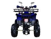 Подростковый квадроцикл Avantis Hunter 7+ (бензиновый 125 куб. см.) - Фото 21