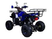 Подростковый квадроцикл Avantis Hunter 7+ (бензиновый 125 куб. см.) - Фото 22