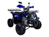 Подростковый квадроцикл Avantis Hunter 7+ (бензиновый 125 куб. см.) - Фото 26