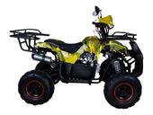 Подростковый квадроцикл Avantis Hunter 7+ (бензиновый 125 куб. см.) - Фото 27