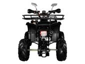 Подростковый квадроцикл Avantis Hunter 7+ (бензиновый 125 куб. см.) - Фото 45