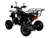 Подростковый квадроцикл Avantis Hunter 7+ (бензиновый 125 куб. см.) - Фото 46