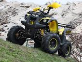 Подростковый квадроцикл Avantis Hunter 7+ (бензиновый 125 куб. см.) - Фото 48