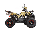 Подростковый квадроцикл Avantis Hunter 8 Lux (бензиновый 125 куб. см.) - Фото 11