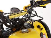 Подростковый квадроцикл Avantis Hunter 8 Lux (бензиновый 125 куб. см.) - Фото 15