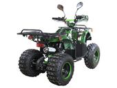 Подростковый квадроцикл Avantis Hunter 8+ Lite (бензиновый 125 кубов) - Фото 4