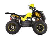 Подростковый квадроцикл Avantis Hunter 8+ (бензиновый 125 куб. см.) - Фото 13