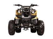 Подростковый квадроцикл Avantis Hunter 8 (бензиновый 125 куб. см.) - Фото 1