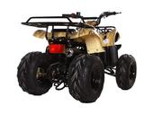 Подростковый квадроцикл Avantis Hunter 8 (бензиновый 125 куб. см.) - Фото 4
