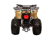 Подростковый квадроцикл Avantis Hunter 8 (бензиновый 125 куб. см.) - Фото 5
