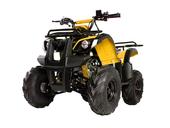 Подростковый квадроцикл Avantis Hunter 8 (бензиновый 125 куб. см.) - Фото 8