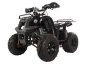 Подростковый квадроцикл Avantis Hunter 8M+ (бензиновый 125 кубов) - Фото 0