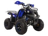 Подростковый квадроцикл Avantis Hunter 8M+ (бензиновый 125 кубов) - Фото 11