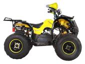 Подростковый квадроцикл Avantis Hunter 8M+ (бензиновый 125 кубов) - Фото 12