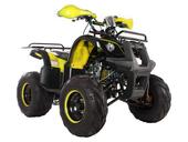 Подростковый квадроцикл Avantis Hunter 8M+ (бензиновый 125 кубов) - Фото 2