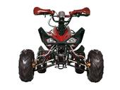 Подростковый квадроцикл Avantis Mirage 7+ (бензиновый 125 куб. см.) - Фото 9