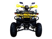 Квадроцикл Avantis Patriot Lux (бензиновый 150 куб. см.) - Фото 9