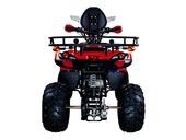 Квадроцикл Avantis Patriot Lux (бензиновый 150 куб. см.) - Фото 13