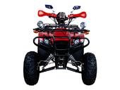 Квадроцикл Avantis Patriot Lux (бензиновый 150 куб. см.) - Фото 17