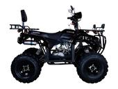Квадроцикл Avantis Patriot Lux (бензиновый 150 куб. см.) - Фото 19
