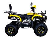 Квадроцикл Avantis Patriot Lux (бензиновый 150 куб. см.) - Фото 3