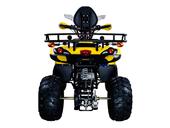 Квадроцикл Avantis Patriot Lux (бензиновый 150 куб. см.) - Фото 5