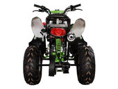Детский квадроцикл Avantis Pilot (110 кубов) - Фото 5