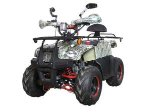 Avantis Racer (110 кубов)
