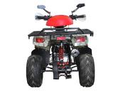 Детский квадроцикл Avantis Racer (110 кубов) - Фото 5