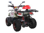 Детский квадроцикл Avantis Racer (110 кубов) - Фото 6