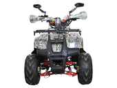 Детский квадроцикл Avantis Racer Lite (110 кубов) - Фото 1