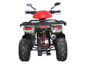 Детский квадроцикл Avantis Racer Lite (110 кубов) - Фото 5
