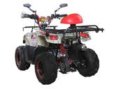 Детский квадроцикл Avantis Racer Lite (110 кубов) - Фото 6