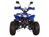 Бензиновый квадроцикл Avantis Termit 8 LUX (125 кубов) - Фото 12