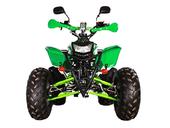 Бензиновый квадроцикл Avantis Termit 8 LUX (125 кубов) - Фото 7