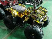 Электроквадроцикл GreenCamel Atakama T120 (800 ватт) - Фото 3