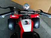 Электроквадроцикл GreenCamel Gobi K100 (350 ватт) - Фото 3