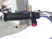 Электроквадроцикл GreenCamel Gobi K12 (350 ватт) - Фото 10