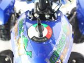 Электроквадроцикл GreenCamel Gobi K12 (350 ватт) - Фото 12