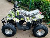 Электроквадроцикл GreenCamel Гоби K55 (800 Вт) - Фото 1