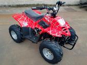 Электроквадроцикл GreenCamel Гоби K55 (800 Вт) - Фото 4