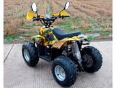 Электроквадроцикл GreenCamel Гоби K600 (800 ватт) - Фото 2