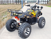 Электроквадроцикл GreenCamel Sahara A4000 (3800 ватт) - Фото 4