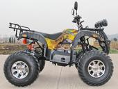 Электроквадроцикл GreenCamel Sahara A4000 (3800 ватт) - Фото 5