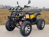 Электроквадроцикл GreenCamel Sahara A4000 (3800 ватт) - Фото 8