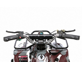 Электрический квадроцикл Joy Automatic Rider (500 ватт) - Фото 2