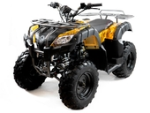 Квадроцикл бензиновый MOTAX ATV Grizlik 200 NEW - Фото 8