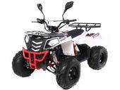 Подростковый квадроцикл Motax ATV COMANDER 125 cc (125 кубов) - Фото 0