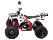 Подростковый квадроцикл Motax ATV COMANDER 125 cc (125 кубов) - Фото 1