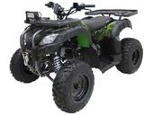 Квадроцикл MOTAX ATV Grizlik 200 LUX - Фото 0